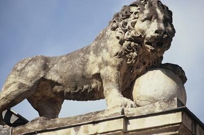 Chasse Aux Lions Dans Dijon
