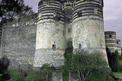 Chateau D'angers à Angers