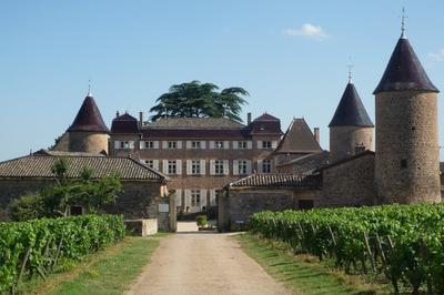 Château De Chasselas, Joyau De La Bourgogne Du Sud