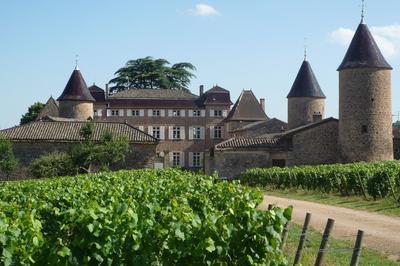 Château De Chasselas, Joyaux Viticole De La Bourgogne Du Sud