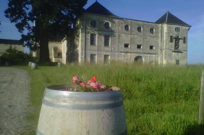 Château De Pimpéan à Grezille