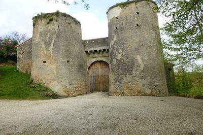 Château De Piogé à Availles Thouarsais