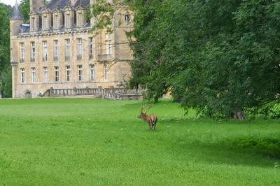 Château Et Écuries De Prye à La Fermete