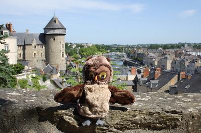 Chouette Doudou à Laval