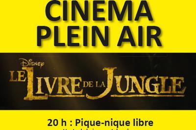 Cinéma plein air à Avrainville