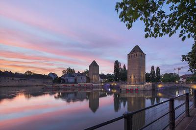 Circuit à Vélo : Découverte Du Paysage Des Quais Sud De La Grande-Île à Strasbourg