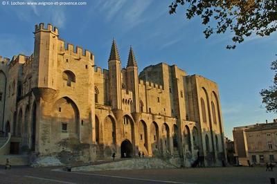 Circuit Visite Libre Intégrant Des Salles Non Ouvertes Habituellement Au Public à Avignon