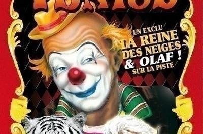 Cirque De Venise à Nimes