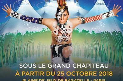 Cirque Du Soleil à Paris 16ème