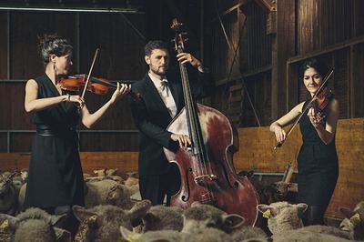 CiuC en concert au Nouveau Pavillon à Bouguenais