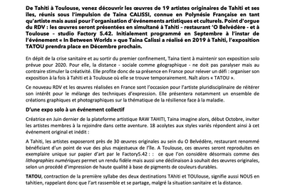 Exposion Tatou - Tahiti/toulouse à Toulouse