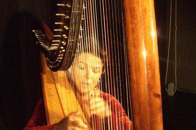 Concert-conférence « L'enchantement De La Harpe » à Troyes
