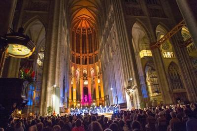 Concert D'orgue Dans La Cathédrale Illuminée à Beauvais