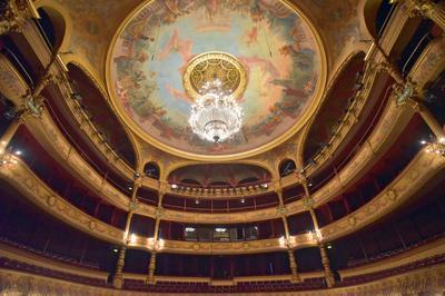 Concert De La Fondation Du Patrimoine à Montpellier