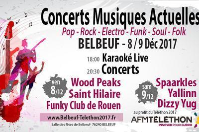 Concert Pop, Funk, Groove, Rock, Electro & Folk Au Profit Du Téléthon à Belbeuf