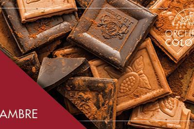 Concert de chambre | Chocolats et Viennoiseries à Paris 13ème