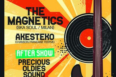 Concert The Magnetics (ska soul , Milan) à Sumene