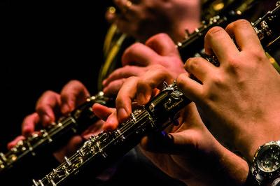 Concert Vents D'est : Quintette À Vent Et Cymbalum à Appeville