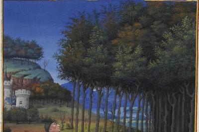 Conférence La Forêt De Chailluz à Besancon