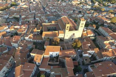 Conférence Les Fortifications Médiévales De La Cité D'elne à Elne