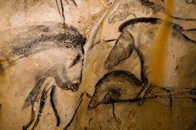Conférence Sur La Grotte Chauvet. à Privas