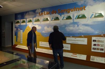 Découverte Libre Du Musée à Sanguinet