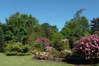Découverte Autonome De L'arboretum - Parc Floral à Saint Eloi