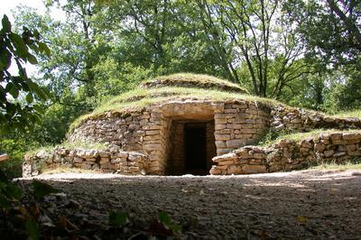 Découverte Commentée Du Site Archéologique à Bougon