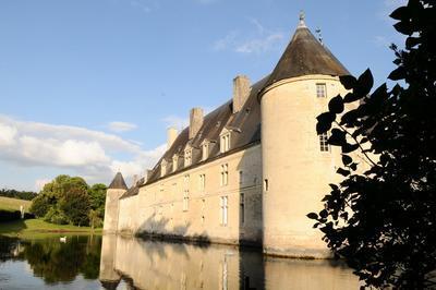 Découverte D'un Château Des Xvie Et Xviiie Siècles à Dinteville