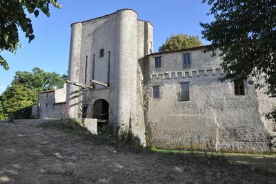 Découverte D'un Château-fort Du Xve Siècle à Villeneuve la Comtesse