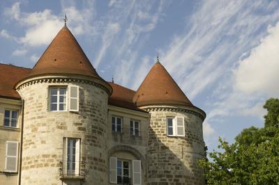 Découverte De L'ancien Château Fondé Par Les Dampierre à Saint Dizier