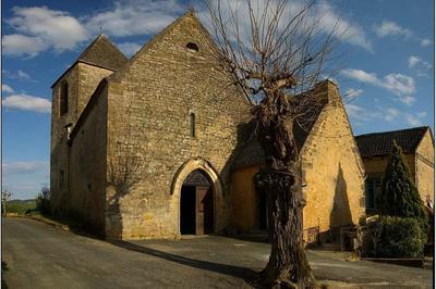 Découverte De L'église St Cybard à Tamnies
