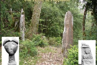 Découverte De L'oppidum Protohistorique Et Gallo-romain à Montserie