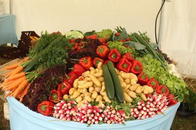 Découverte Des Plantes Aromatiques Et Légumes à Marcy l'Etoile