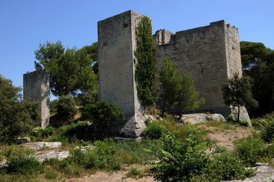 Découverte Des Tours En Compagnie De L'archéologue Laura Deye à Tarascon