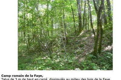 Découverte Du Camps Romain De La Faye à Lesterps