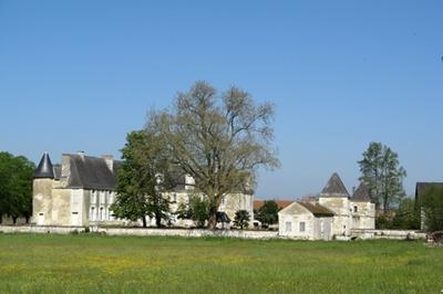 Découverte Du Château à Saint Genest d'Ambiere