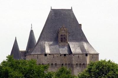Découverte Du Château De Cherveux