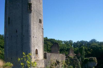 Découverte Du Château De Gavaudun
