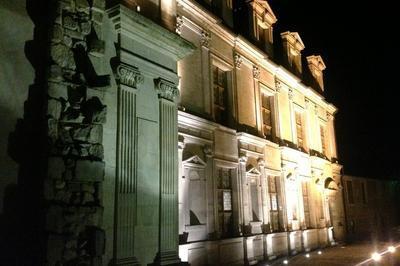Découverte Du Château Des Gondi à Joigny