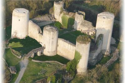Découverte Du Château Du Coudray-salbart à Echire