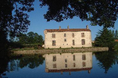 Découverte Du Château Du Vieux Deffend à Montravers