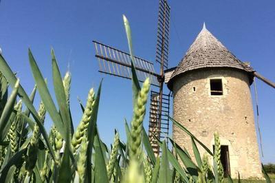 Découverte Du Dernier Rescapé Des Moulins à Vent De La Vienne Et De La Ferme Culturelle De Cherves.