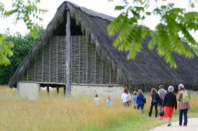 Découverte Libre Du Site Archéologique à Bougon