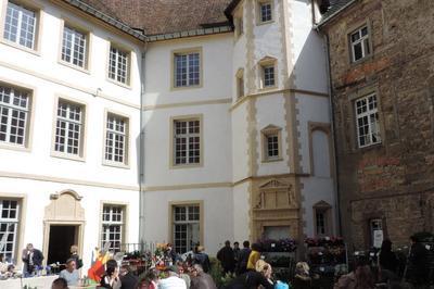 Découverte Ludique Du Domaine Du Château à Freistroff