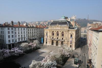 Découvrez La Magnifique Salle À L'italienne Du Théâtre Des Célestins ! à Lyon