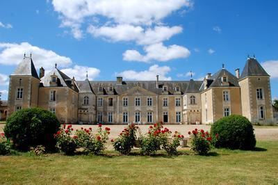 Découvrez Le Château Accompagné D'un Guide ! à Port d'Envaux