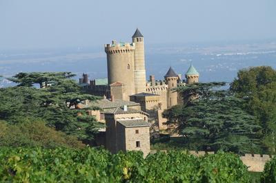 Découvrez Le Château De Montmelas Et Son Histoire à Montmelas saint Sorlin
