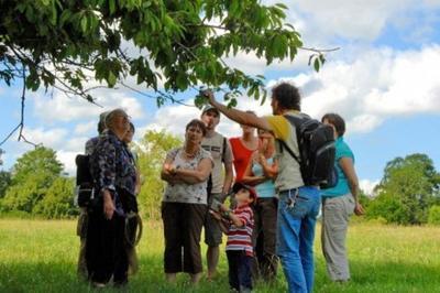 Découvrez Les Vestiges Du Village Des Leuques, Ancêtre D'essey-lès-nancy à Essey les Nancy