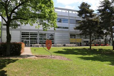 Découvrir L'architecture Du Centre Européen De La Jeunesse. à Strasbourg